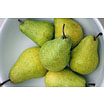 Bertlett Pears in a Plate